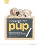 Kindergarten pup
